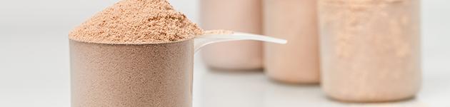Whey Protein – Das Proteinpulver für den Muskelaufbau (Titelbild)