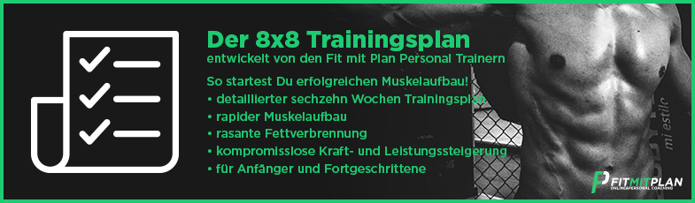 8x8-Trainingsplan-Vince-Gironda-8x8-training-3er-split