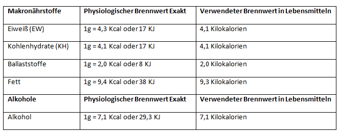 Thermogenese_Teil1